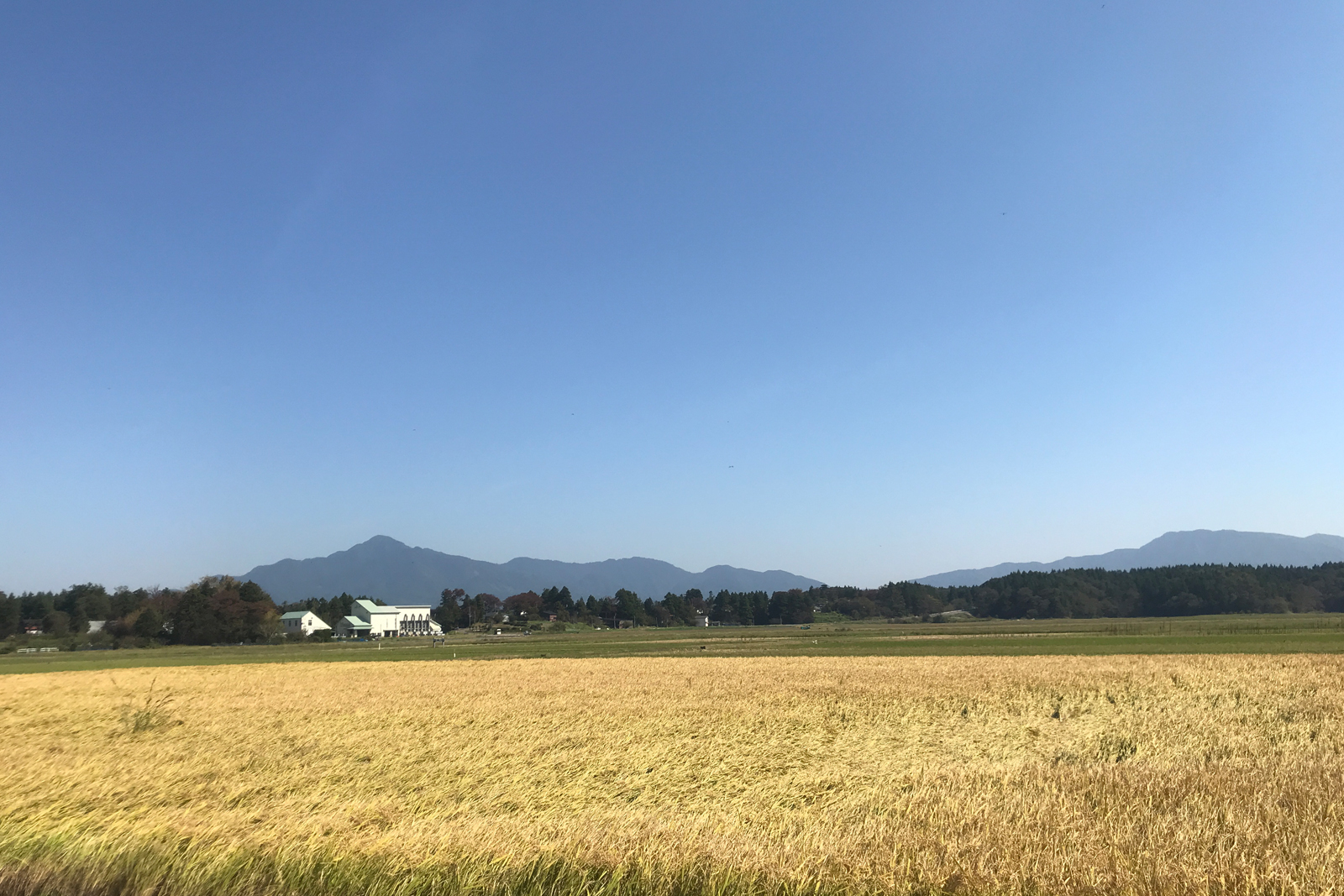 ASAHIIKE FARM